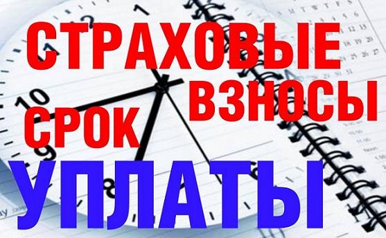 Изображение - Новые сроки уплаты страховых взносов ип за себя strahovye_ip-1